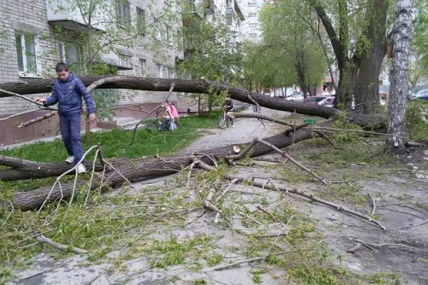 МЧС предупреждает об ухудшении погоды: грозы, град, шквалистое усиление ветра