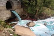 Городской пруд в центре Екатеринбурга стал голубым