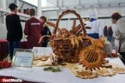 От розовых помидоров до экологически чистой колбасы: в Екатеринбурге открылся традиционный агрофорум