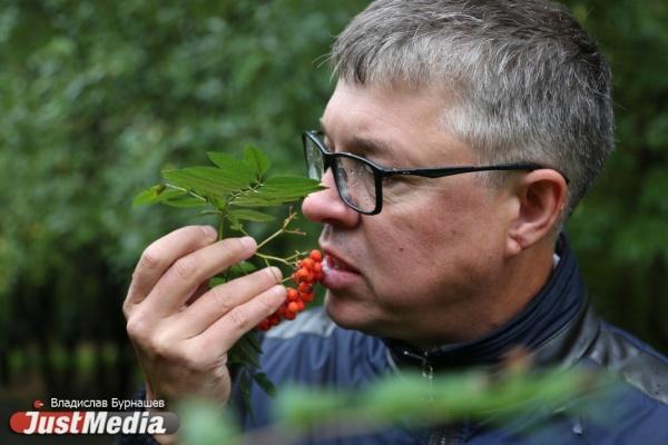 Илья Борзенков: «Уральская осень позволяет хорошо работать. В Екатеринбурге снова дожди и +13»