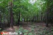 Жители Нижнего Тагила обнаружили в местном парке панду. ФОТО