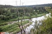 Спасатели ищут в ирбитских лесах пропавшую любительницу тихой охоты