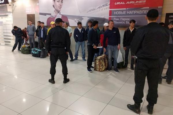 Судебные приставы отправили изЕкатеринбурга вТашкент 19 нелегалов