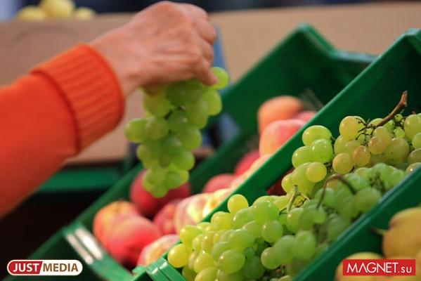 С 1 октября в Россию вновь начнут ввозить овощи и фрукты из Египта