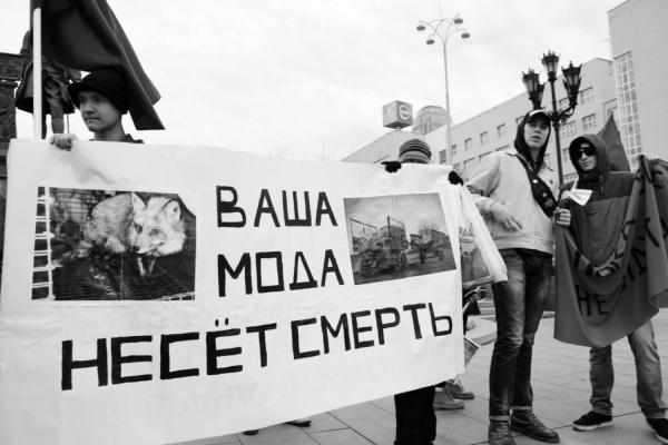 """ФОТО: сообщество """"Животные не одежда Екатеринбург"""""""