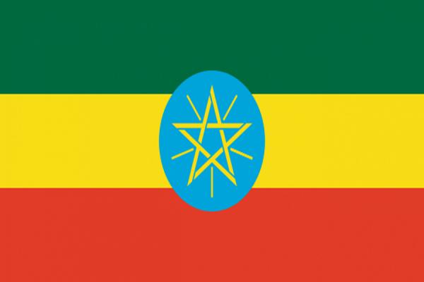 ВЭфиопии вдавке впроцессе протестов погибли неменее 50 человек