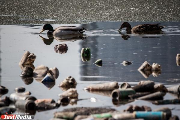 Свердловская прокуратура завела два дела на загрязнителей реки Пышмы