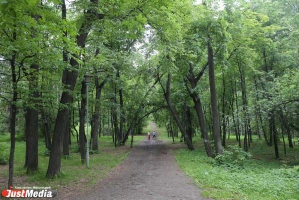 Мэрия Екатеринбурга заплатит 900 тысяч рублей за лучшую концепцию благоустройства парка Коммунаров