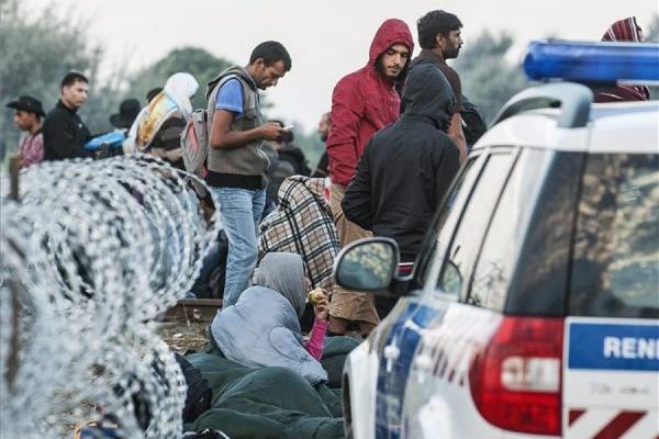 Более 100 несовершеннолетних мигрантов подрались в лагере в Кале