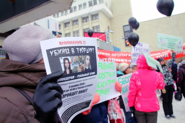 Сотни екатеринбуржцев вышли сегодня на пикет в защиту животных напротив здания администрации