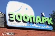 Екатеринбургский зоопарк просит у горожан металлические банки, веревки и кожаные сумки