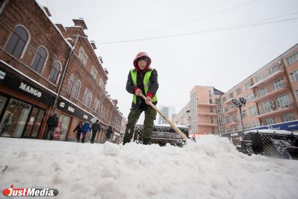 Мэрия запретила парковку машин в центре Екатеринбурга ночью