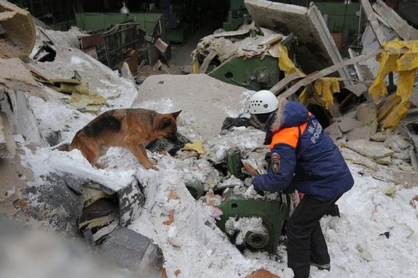 Из-под завалов ЗиКа спасены 14 человек. Все они госпитализированы. ФОТО