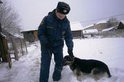 В Верхотурье пес по кличке Россомаха предотвратил пожар