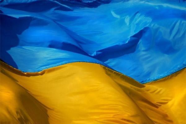 Киев требует расследовать сожжение украинского флага в центре Москвы