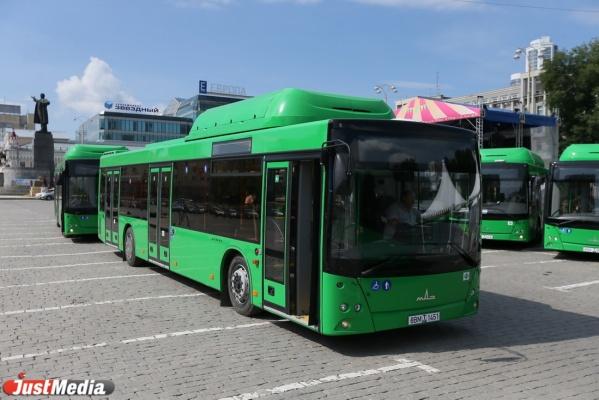 В январе на улицах Екатеринбурга появятся еще 60 новых автобусов