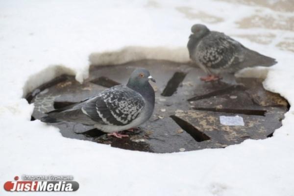 Синоптики продлили морозы в Свердловской области еще на два дня