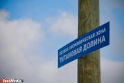 Boeing и ВСМПО-Ависма построят совместный завод в «Титановой долине» за 5,6 млрд рублей