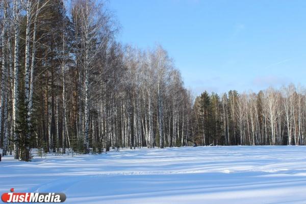 В Свердловской области погиб лихач на снегоходе