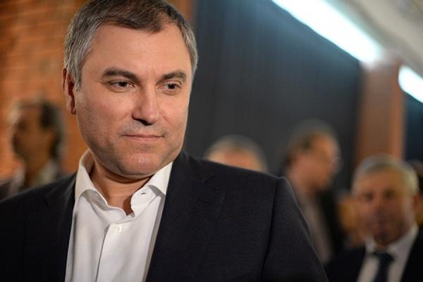 Спикер ГД Вячеслав Володин встретится с председателем ПАСЕ 12 января