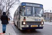 Арт-пространство, кофейня и защита от холода. В Екатеринбурге появятся теплые остановки