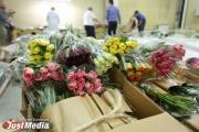 Аэропорт «Кольцово» завалило цветами к 8 марта. ФОТОРЕПОРТАЖ