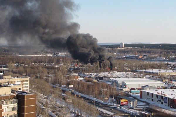 В Екатеринбурге полыхает коллективный сад. Огромный столб дыма виден во всех районах города. ФОТО