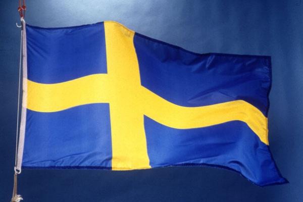 Пассажиры самолета с министром обороны Швеции были эвакуированы