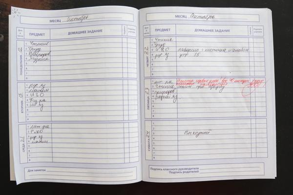 Учителя Екатеринбурга могут посоревноваться в мастерстве написания замечаний в дневники
