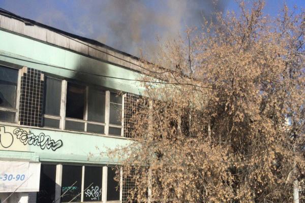 «Нам пора вызывать скорую помощь». В Екатеринбурге из-за пожара в заброшенном Доме быта задыхаются сотрудники соседнего бизнес-центра
