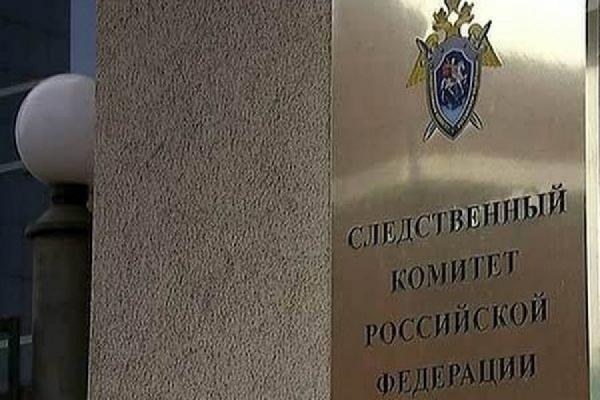 СМИ узнали детали российского расследования убийства Вороненкова