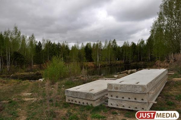 Мэрия Сысерти незаконно сдала физлицу в аренду участок земли в зоне городских лесов