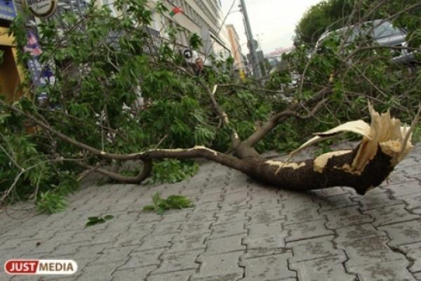 Кошмарный шторм, унесший 16 жизней в столице России, сейчас надвигается наУрал