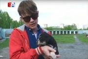 Лидер «Сансары» Александр Гагарин помогает бездомным собакам обрести дом. ВИДЕО