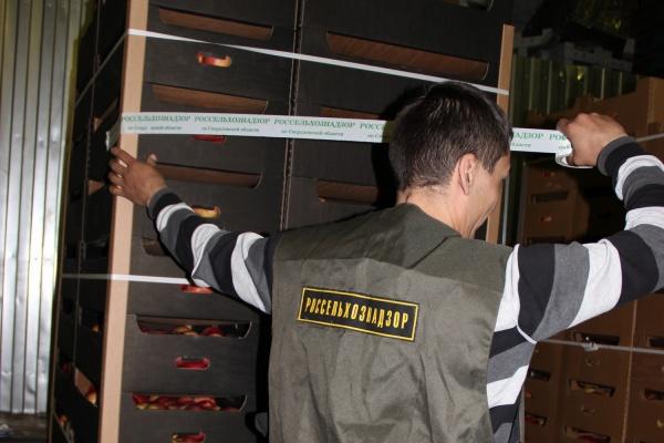 ВПетербурге уничтожили неменее 6 тонн «санкционных» овощей ифруктов