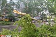 МЧС снова предупреждает о надвигающемся на Средний Урал урагане