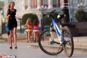В Екатеринбурге велодорожки на проспекте Ленина будут односторонними