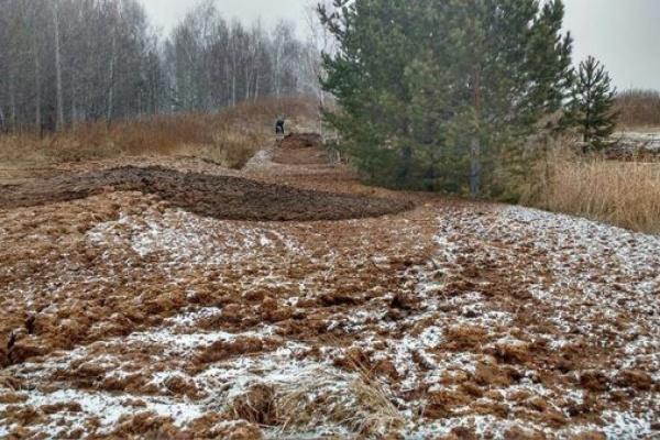 Роспотребнадзор отобрал пробы почвы в селе Невьянского района, которое завалили куриным пометом