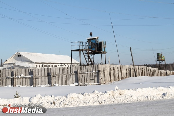 В Свердловской области мужчина получил пожизненное за то, что зарезал трех собутыльников