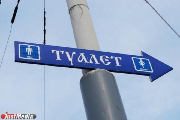 На время ЧМ-2018 в Екатеринбурге установят туалетов и контейнеров на 7,5 млн рублей