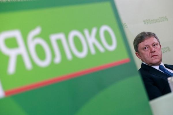 «Яблоко» создаст демократическую коалицию на выборах в ЕГД