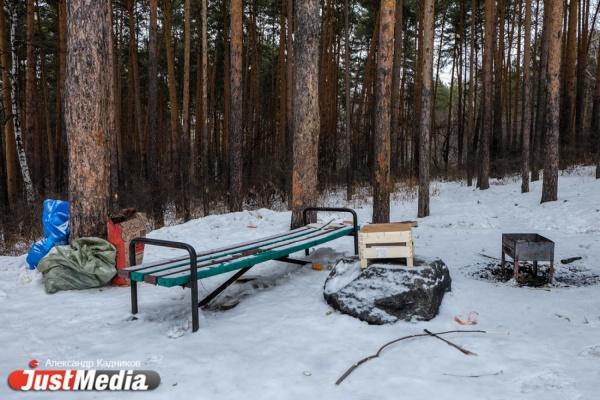 Куйвашева пригласили убрать мусор в Шарташском лесопарке