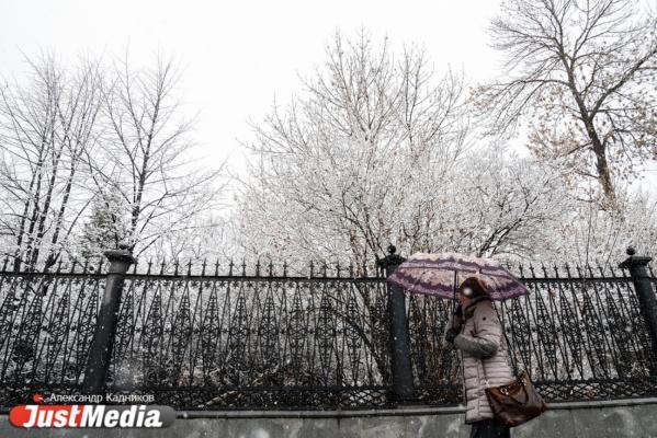 Екатеринбург и еще пять свердловских муниципалитетов оказались в эпицентре снежной бури