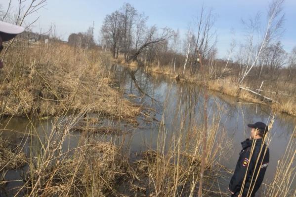 В коллективном саду под Екатеринбургом утонул малыш
