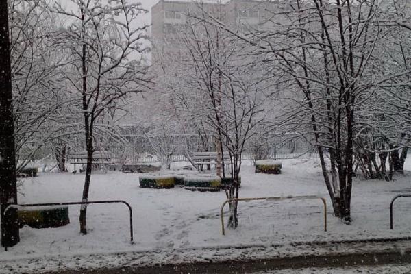Майская свежесть. Свердловскую область снова засыпало снегом. ФОТО