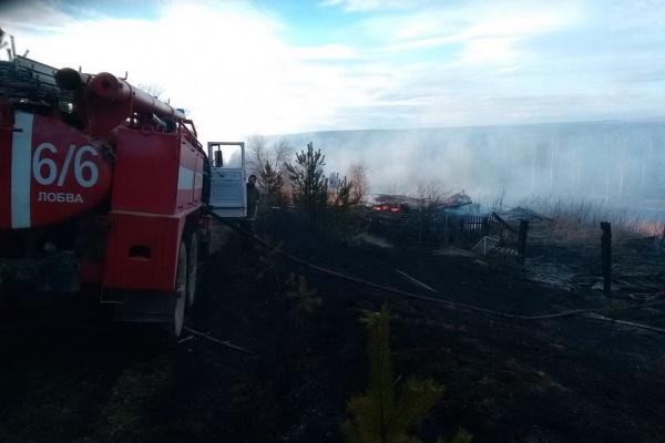 На Урале дачник сжег три соседских дома и едва не спалил целый поселок. ФОТО