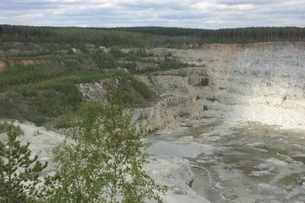 На ЖБИ бетонный завод забетонировал лес