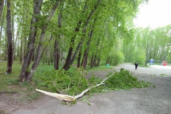 ФОТО: Бажополь.рф