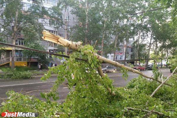 В пятницу синоптики обещают свердловчанам сильные дожди и ураганный ветер