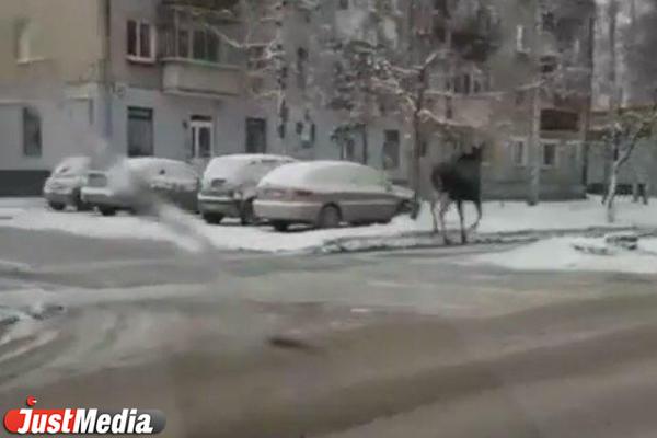 http://www.justmedia.ru/upload/news/5bd7f0d84eb9f596461425_600_400.jpg